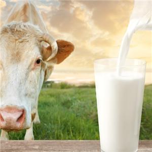 牛奶男孩巴氏鲜奶营养