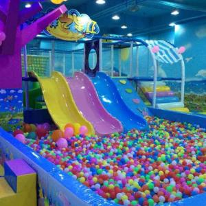 森林兒童樂園海洋球