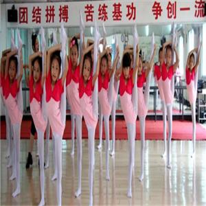 國際領風尚舞蹈培訓加盟