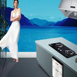 美的厨卫电器时尚