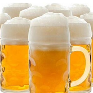 VHANDS精酿啤酒加盟