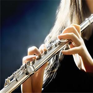 imusic愛音樂教育單簧管