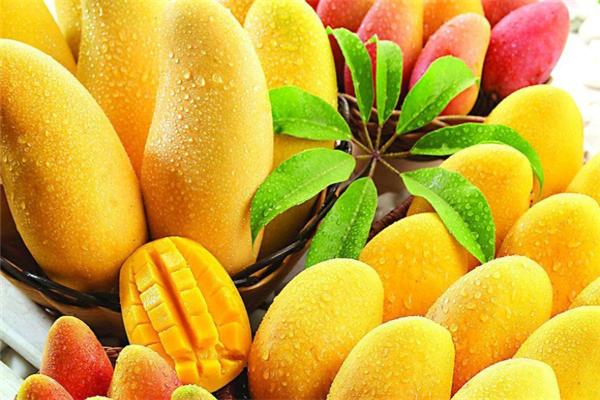 韓食里雪冰新概念甜品芒果