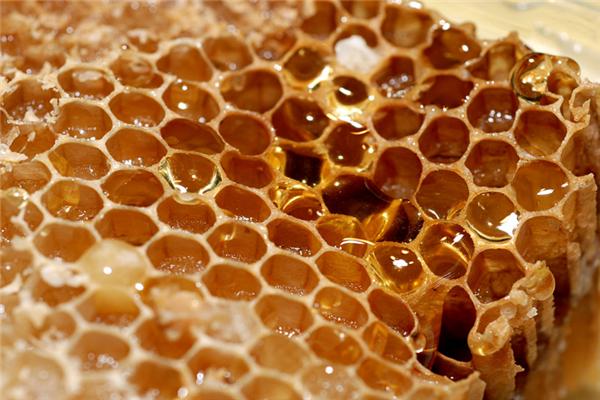 蜜珍堂蜂蜜展示