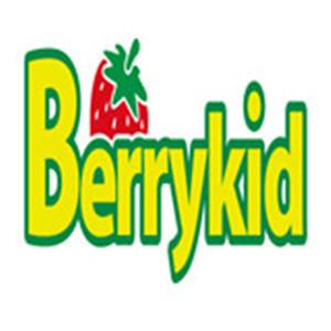 貝瑞國際早教加盟