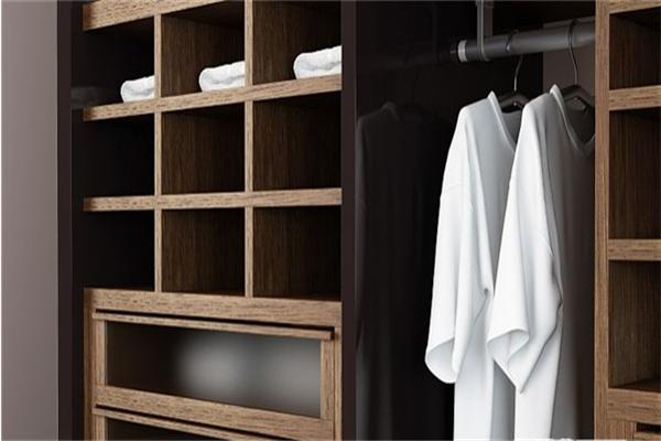 菲力克斯整体衣柜全木衣柜