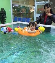 親貝灣游泳館幼兒游泳圖