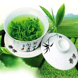 仪雪日照绿茶加盟