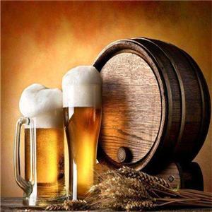 1950德啤工坊推广