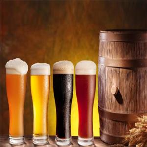 1950德啤工坊宣传