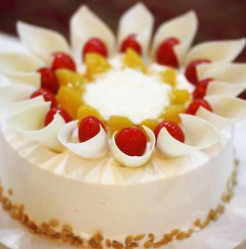 维尔纳斯食品动物奶油蛋糕品味