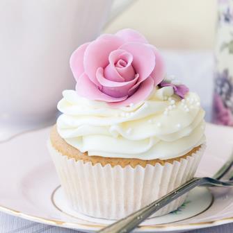 维尔纳斯食品动物奶油蛋糕文化