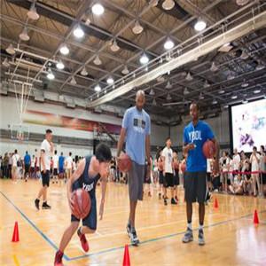 YBDL籃球培環境