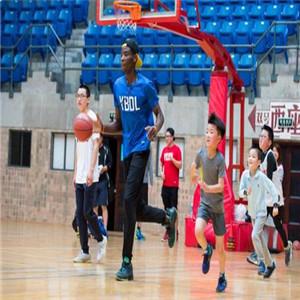YBDL籃球培學習