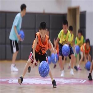 YBDL籃球培展示