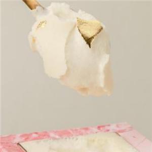一只鹿提拉米苏甜品