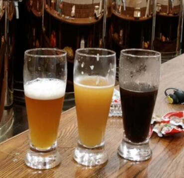 特鲁斯精酿啤酒种类
