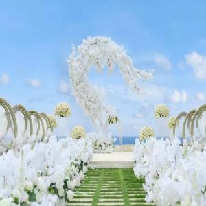 芝心海外婚礼走台