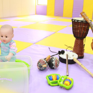 艾尔蒙国际早教玩具