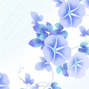 圣莉雅壁纸紫色
