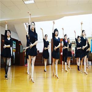 拉丁舞培训教育