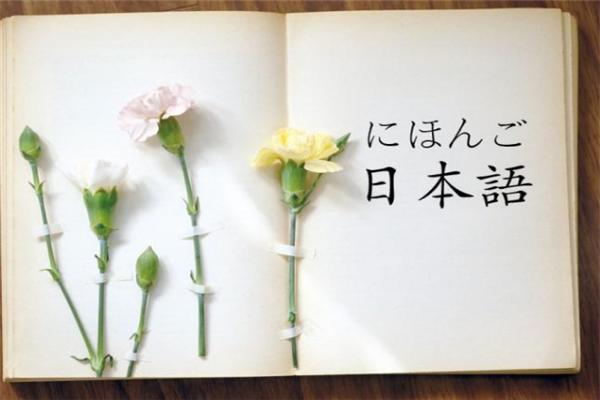飞鸟日语教育