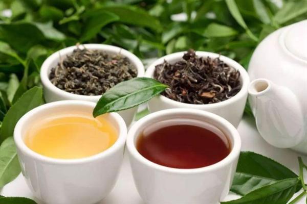 茶香味名茶紅茶