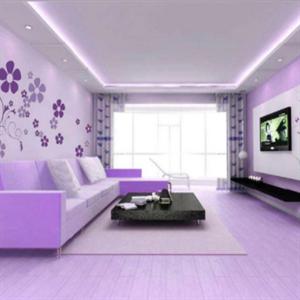 多丽士墙艺紫色