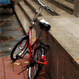 车王自行车时尚