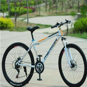 车王自行车科技