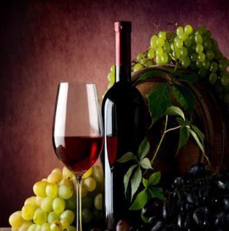 海豚進口葡萄酒可口