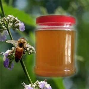 健佰麗蜂產品甜蜜