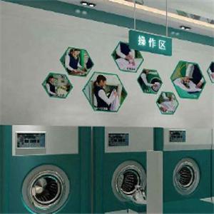 瑞逸干洗機器