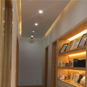 skytree日本美学研究所品质