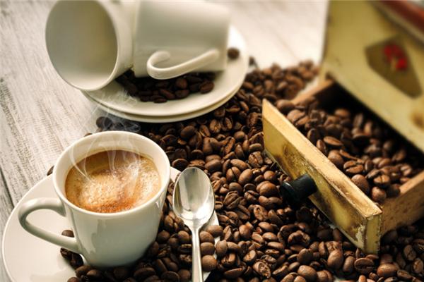 午后貓咖啡新鮮