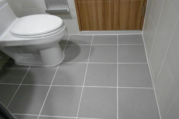 砖丽美缝系统厕所