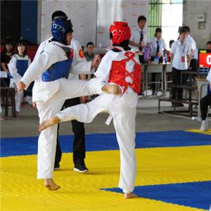 道隆跆拳道練習