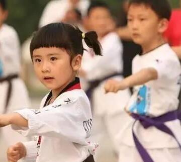 林轩跆拳道馆培训