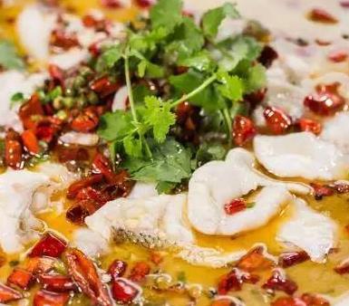 小波酸菜魚香菜