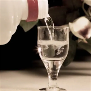 璟耀酒業白酒