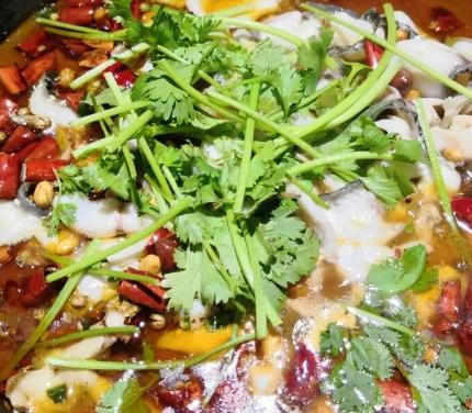 花椒魚香菜