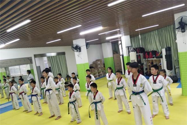 林轩跆拳道馆学员