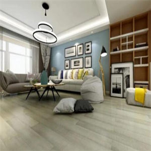 三猴地板客厅
