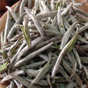 畲家雾峰茶业品种