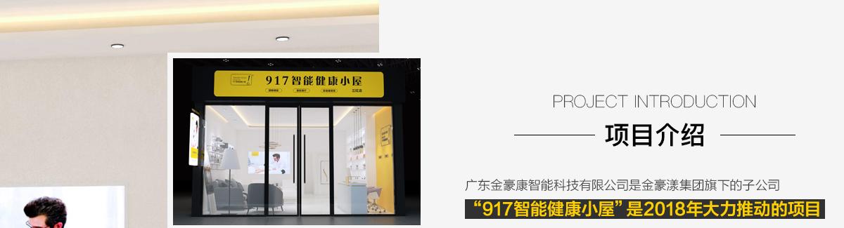 917智能健康小屋--項目介紹