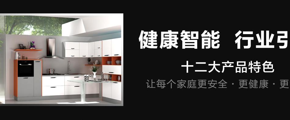艾厨健康厨房-12大产品特色