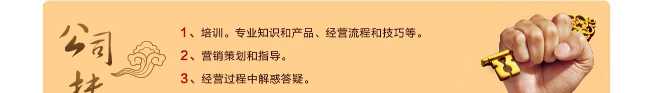 藏雅文化-公司扶持