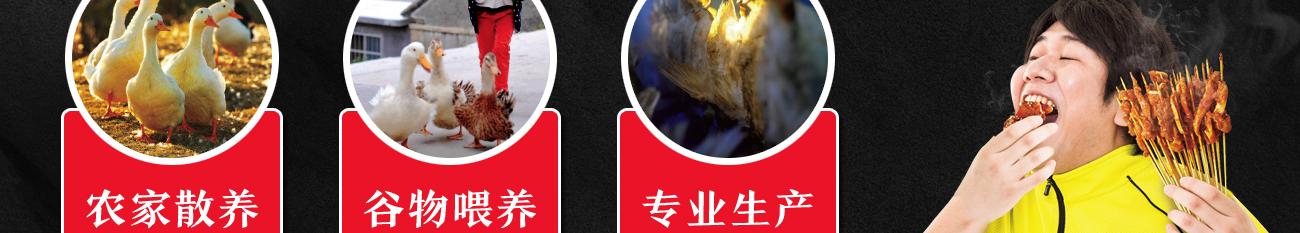 肠肠想起秘制烤鸭肠——原料优势