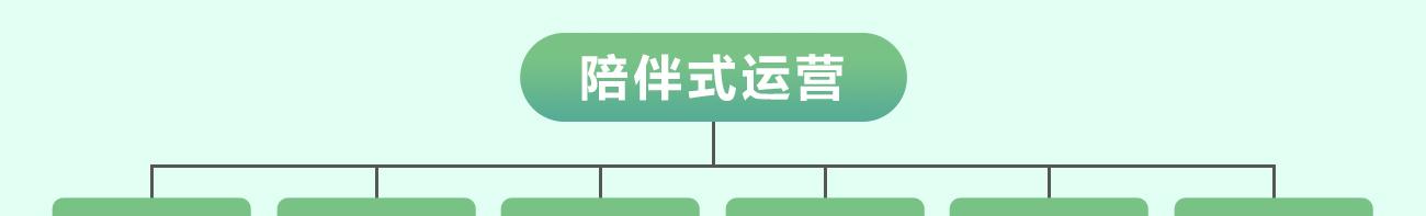 腾跃双师课堂——方唐文学 运营模式