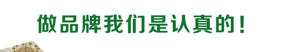 海宜家硅藻泥_品牌荣誉